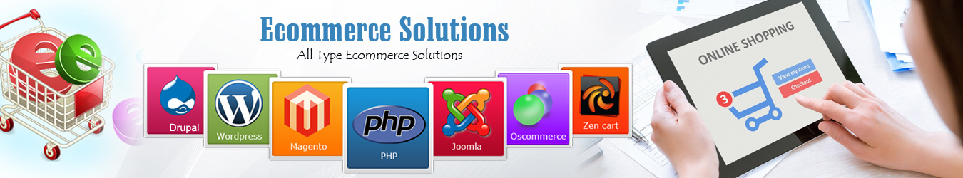 eCommerce Web Development Company USA